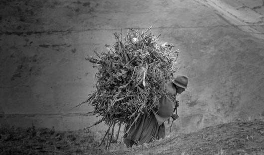 Women With Hay by Andrew Moig