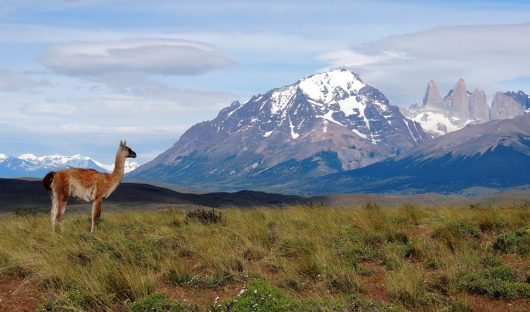Lazo Torres del Paine, Chile by Ian Kemp