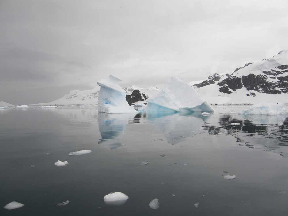 Iceberg reflections Antarctica by Diane Matthews