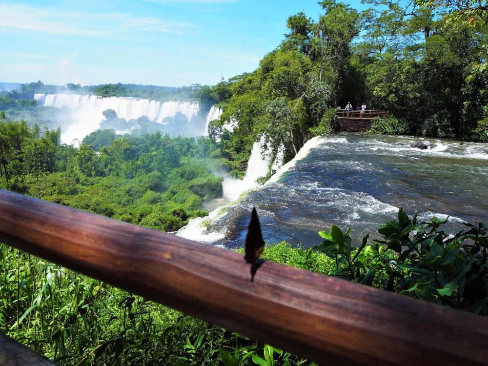 A Butterfly's View at Iguazu Falls by Antony Parakkal