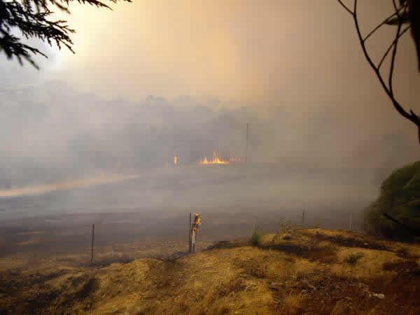 Blazeaid Fire